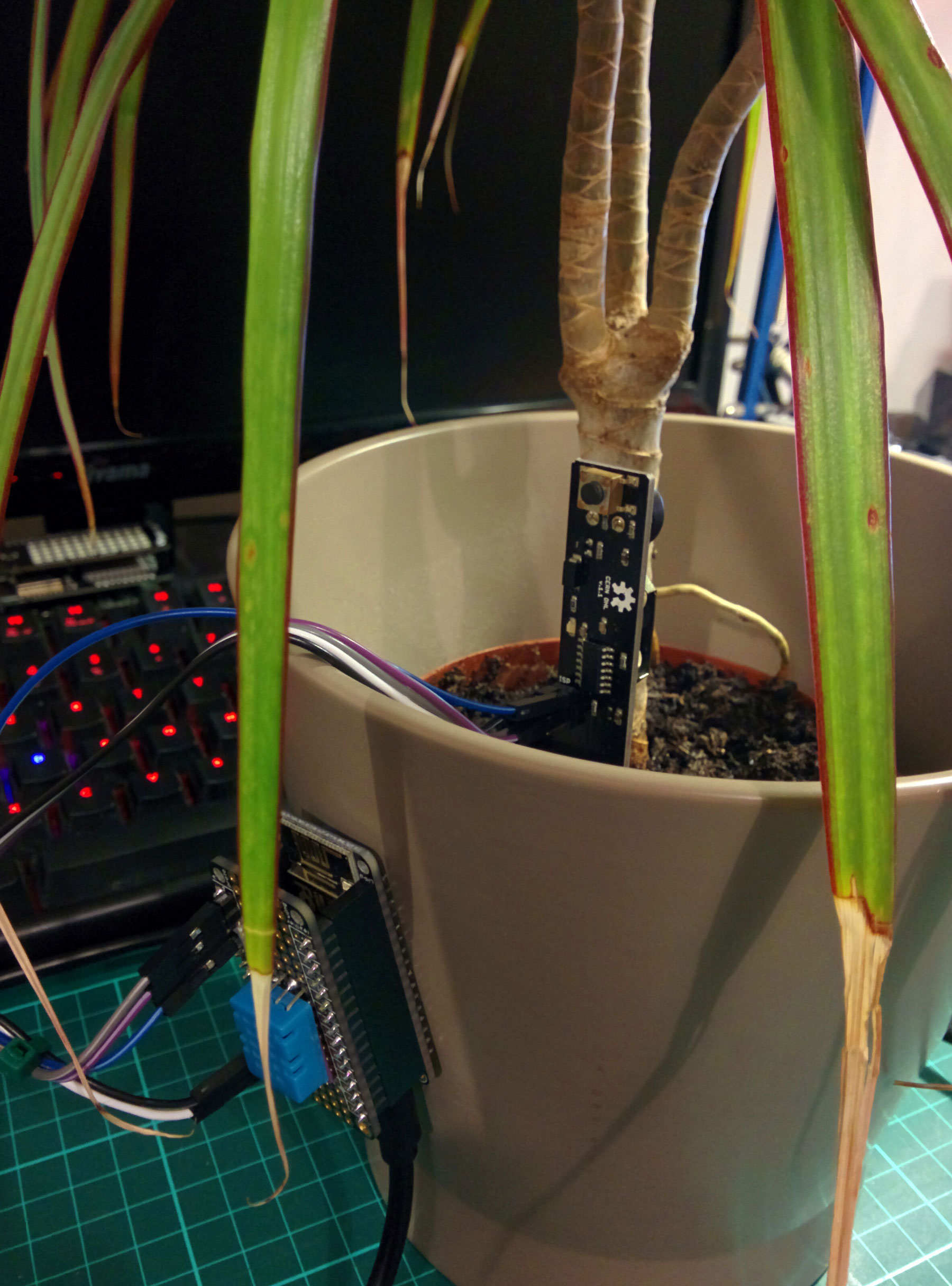 Monitoring houseplants with MQTT and the ESP8266